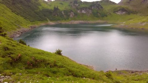 Formalinsee